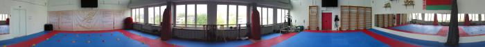 Cyclorama of the Dojo